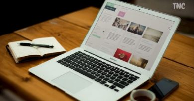 Use Of Wordpress Nulled Theme