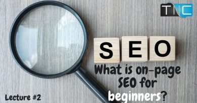 what is on page seo for beginners